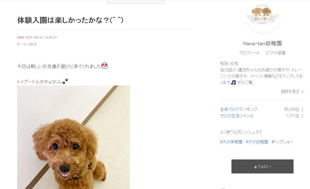はっぴースマイルHana-Tan犬の保育園・幼稚園ブログ
